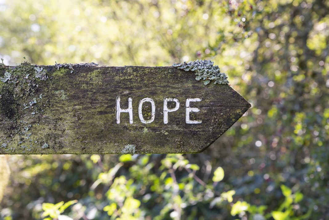 The Viral Spread of Hope